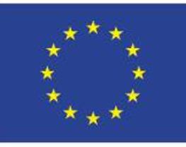 Europese Unie ESF